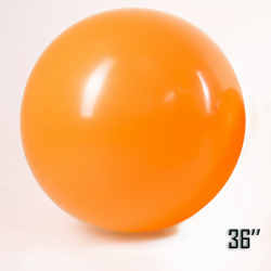"Show™ 36"" Orange (1 pcs.)"